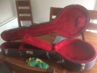 Gibson epiphone masterbuilt 5 string banjo