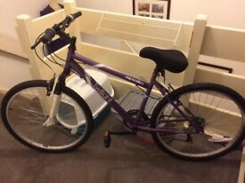 adult bike brand new with set of light and gel seat cover