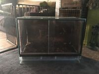 Glass dartfrog vivarium