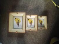 3 Canary Ashtrays
