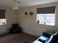 SPACIOUS 1 BEDROOM MAISONETTE IN HEELANDS TO LET WITH PARKING CLOSE TO SHOPS AND BUS ROUTES