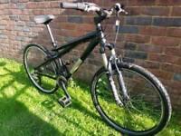 Gt chucker dirt bike