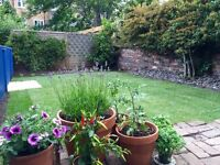 A trustworthy, Reliable and Qualified Gardener for all your needs