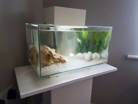 FISH TANK, STAND AND ALL ACCESSORIES 23LITRE FLUVAL EDGE