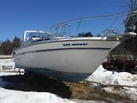 31 foot Bayliner Conquest for sale.  Priced to move