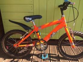 Raleigh - kids mountain bike