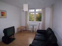 1 BEDROOM FLAT AVAILABLE FOR RENT IN DOCKLANDS- ISLAND GARDENS- E14
