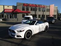 2015 Ford Mustang EcoBoost Premium. Fully loaded