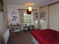 Fantastic double room in Cotham available for fantastic housemate