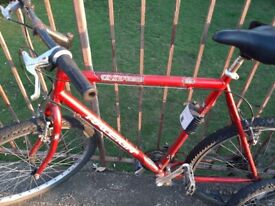 Raleigh red