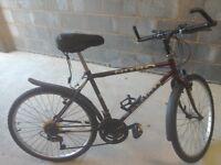Mans Raleigh Bike