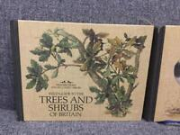 Pair of vintage retro TREES AND SHRUBS HB BOOKS FIELD GUIDES 1980s 80s 1st edition SDHC