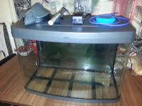 64lt LOVE FISH PANAORAMA FISH TANK - FILTER - HEATER - AIR PUMP