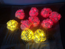 Rose LED Party Lights