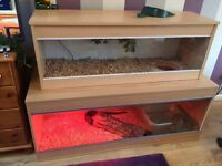Large double Vivarium for reptiles. Comes with full set up.