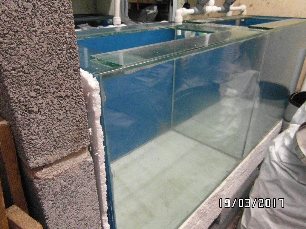 Aquarium fish tank glass lid cover - Tropical Fish Tank Aquarium 5ft X 2ft X 1 5ft Split Into 2 Sections By Glass Glass Lid Covers In Ammanford Carmarthenshire Gumtree