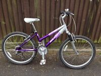 "Girls Bicycle ""Raleigh"""