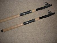 fishing rods pair telescopic