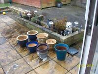 plant pots bundle -collect ng6