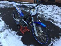 2010 sherco 290 trials bike