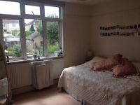 Spacious Room in a Shared House in Filton
