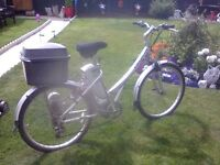Electric Mountian Bike (silver)