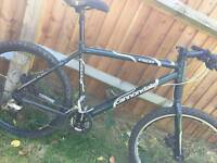 Mens mountain bike cannondale