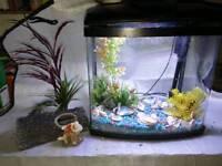 Fish tank 28ltre