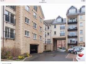 Large city centre 4 bed to let
