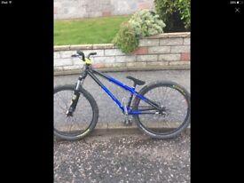 Saracen dirt / stunt bike
