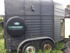 Horse box for sale