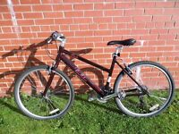 "Pendleton Brooke Ladies Womens Hybrid Bike 18"" - Stunning condition, Used"