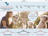 Dog Walking and Grooming Service