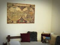 HUGE/GIANT RUSTIC VINTAGE WORLD MAP ON THE WOOD