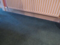 Hall carpet offcut