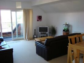 Beautiful, spacious 2-bed furnished penthouse apartment flat on Hill Lane, available end of October
