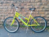 Raleigh Max Ladies Mountain Bike - Used Very Good Condition