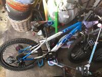 Raleigh bikes