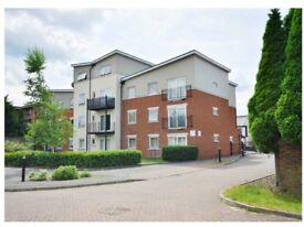 Perfect 2 Bedroom, bathroom apartment to rent. Allocated parking. Part or fully furnished to suite.