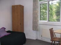 Furnished single room for a week