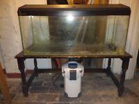 Aquarium and External Filter