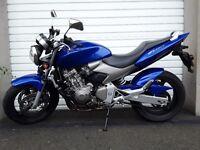 Honda Hornet 600 Blue