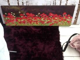 Large picture canvas of poppies