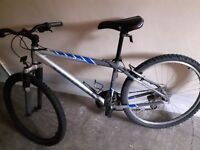 I passed my driving test and now am selling my bike