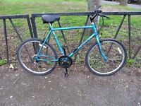 """Large 22"""" Frame Mountain Bike. Fully Serviced &Ready To Ride. Guaranteed. 18 Speed. Comfort Seat"""