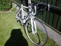 Road bike for sale .Excellent condition. 14 speed Ammaco. Only used a couple of times.
