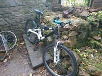 Pristeen mountain bike