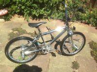Chrome BMX 20 inch wheels