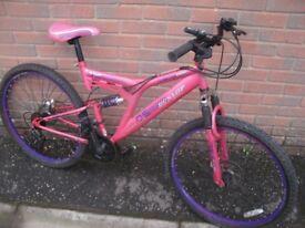 Dunlop DS Mountain Bike
