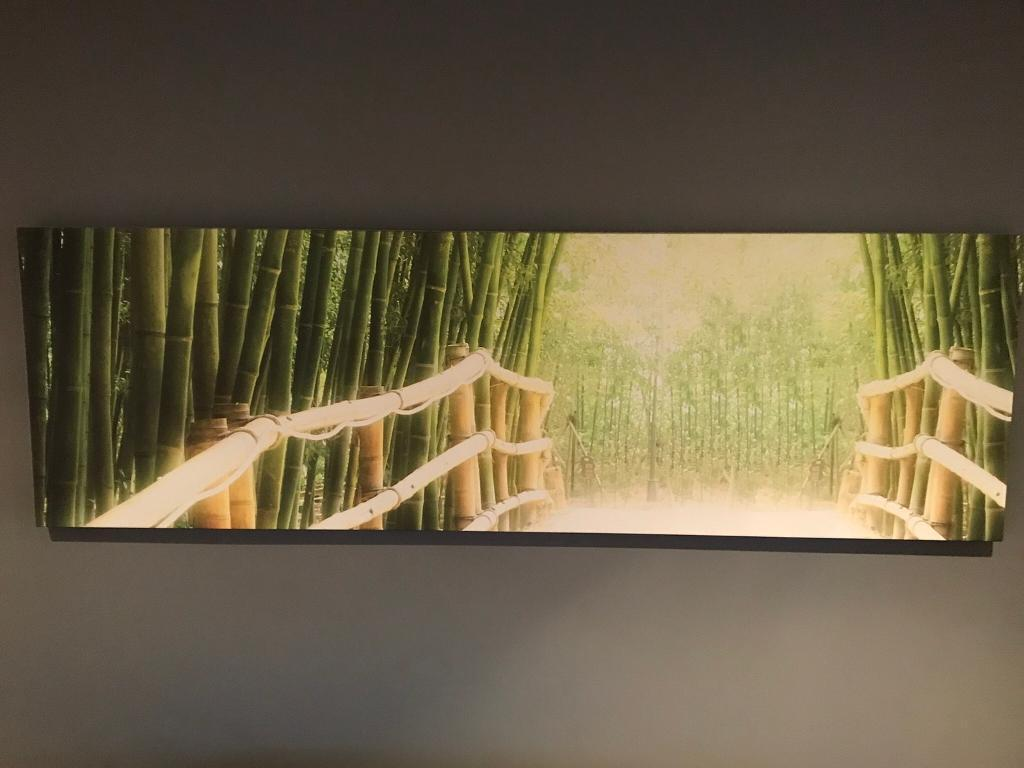 Large green bamboo canvas, wall art | in West Horsley, Surrey | Gumtree